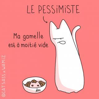 http://lancien.cowblog.fr/images/Chats3/44.jpg