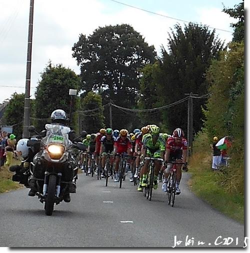 Tour de France 2015 les courreurs !!!!!!!!!!!!!!!!!!!!!