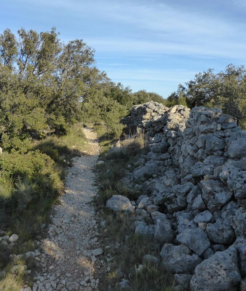 Le sentier du Berger à Leucate : N°1