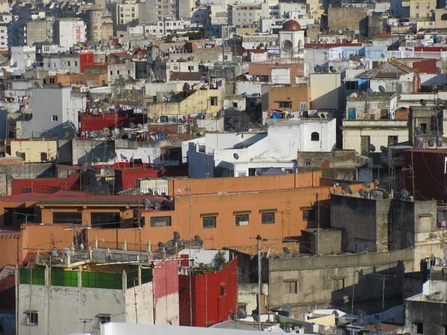 Mirabelle au Maroc 2