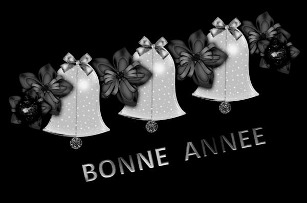 Bonne Annee, Nouvel an (15)