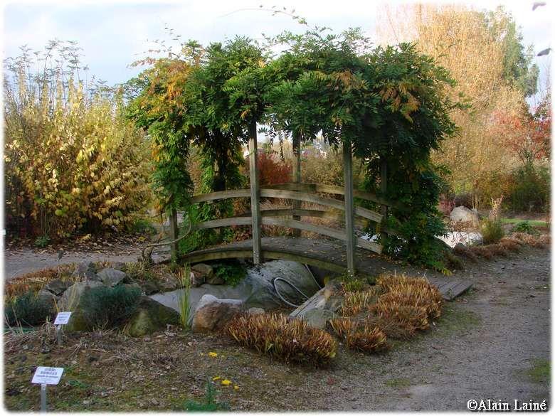 Jardin_des_Senteurs_Liffr__4