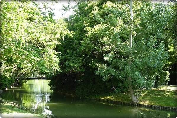 Borély parc (15)bis