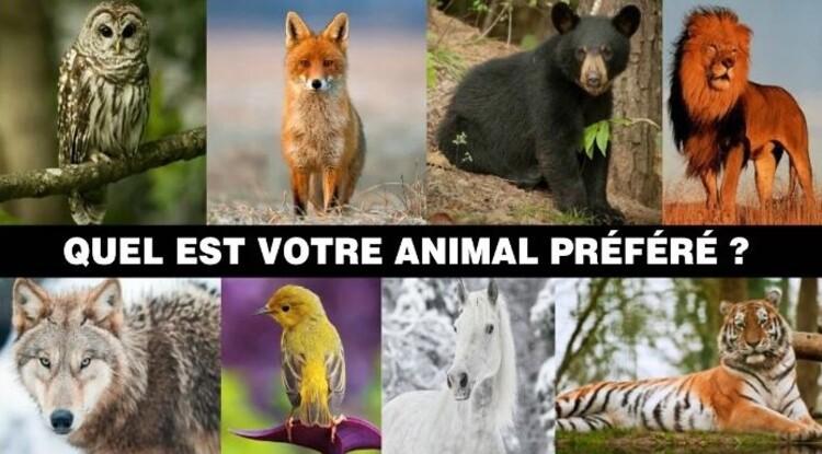 Quel est votre Animal ?