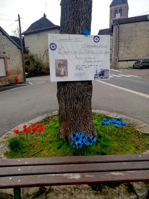 L'arbre de la Liberté sur la place d'Armes de Belan sur Ource a  tout juste 100 ans !
