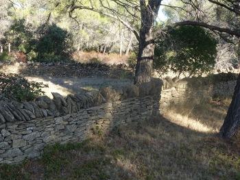 Le mur de pierres sèches longé à la descente vers Grand Caunet