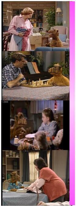 Alf et les autres