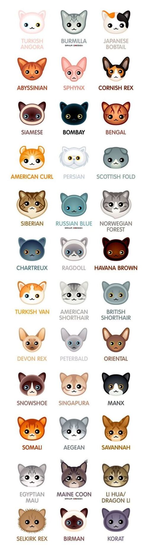 Cats types