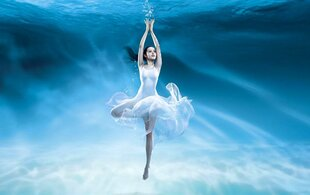 ballet sous-marin Wallpaper