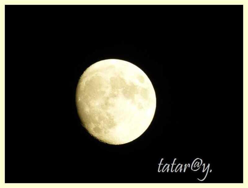 Oh....... la lune !!!!.....