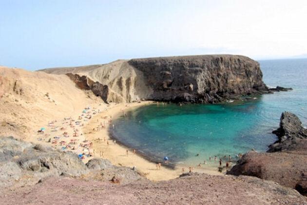 Papagallo sur l'île de Lanzarote
