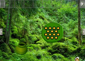 Jouer à Great rainforest escape