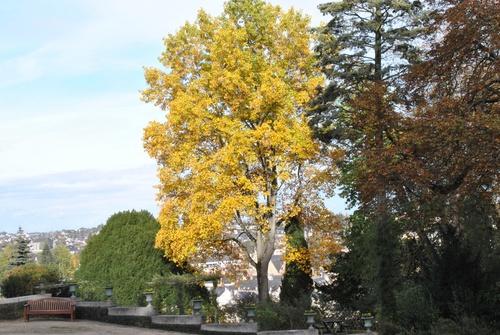 "LAVAL les jardins de ""La Perrine"""