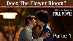 Does The Flower Bloom ?