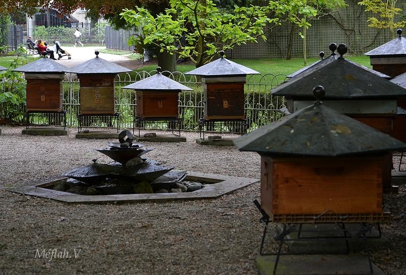 Visiter le Jardin du Luxembourg : Le rucher-école