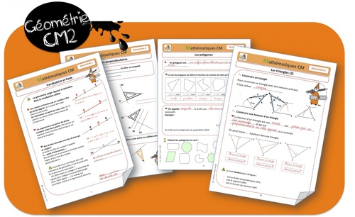 Leçons de Géométrie CM2