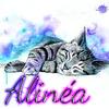 Alinéa !