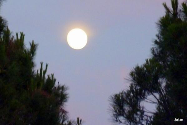Q03---La-lune.JPG