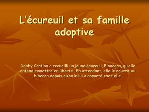 l--cureuil-et-copie-1.jpg