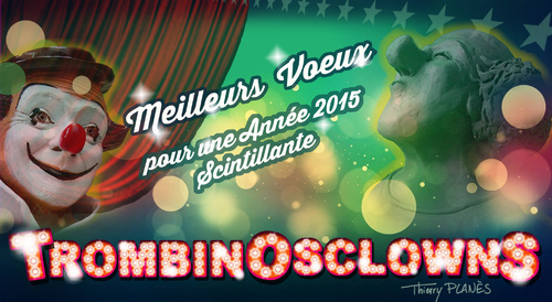 VOEUX 2015 !!!