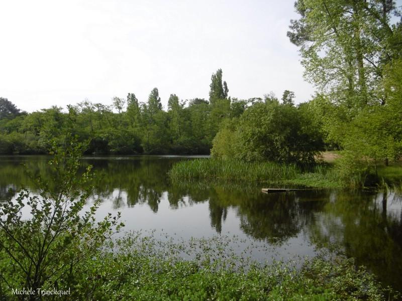 Une balade à MIMIZAN (40), au bord du Lac à la Promenade Fleurie, le 22 mai....