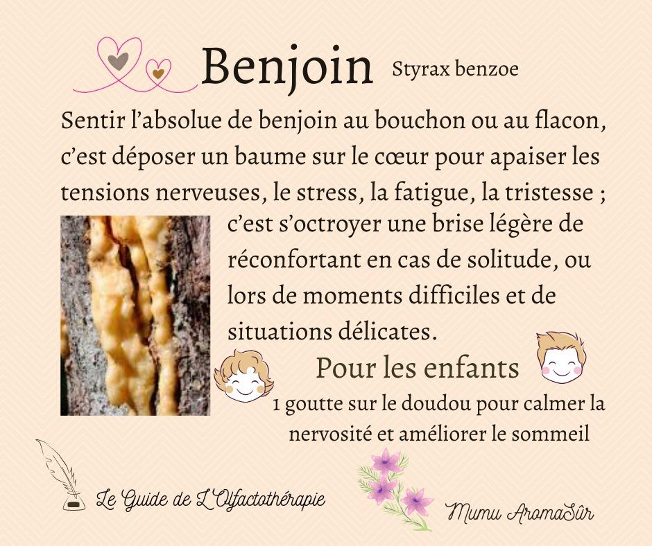 Benjoin Styrax benzoe Absolu