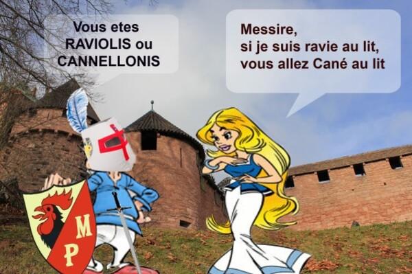 raviolis-cannellonis.jpg