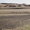 502 Maroc Erg Chebbi Dunes d\'or