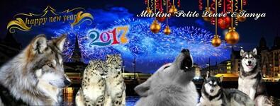 Bonne Année 2017 001