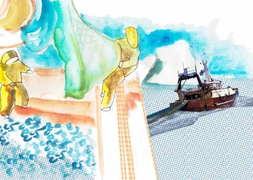 Fecamp, une histoire de la pêche, Atamaniuk+Canté Chalutier
