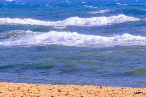Le Barcarès: le vent & la vague!