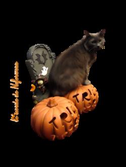 tube halloween3