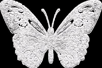Papillons / 10