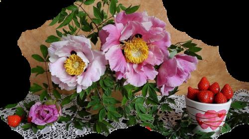 tubes flowers
