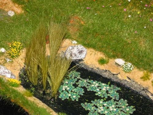 Un diorama d'essai : 16. Fleurs et broussailles (5235)
