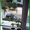 ranger plante verte.jpg