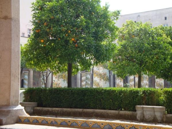 Cloître Santa Chiara, les orangers