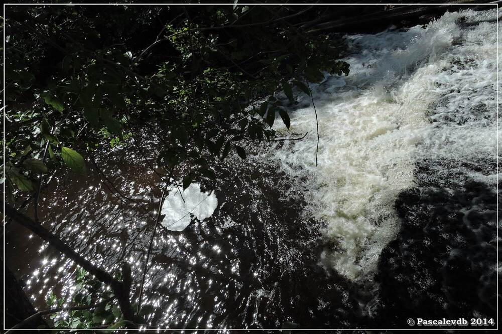 La fontaine Saint Clair et l'église de Mons - 5/6