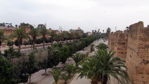 De Sidi Ifni à Essaouira
