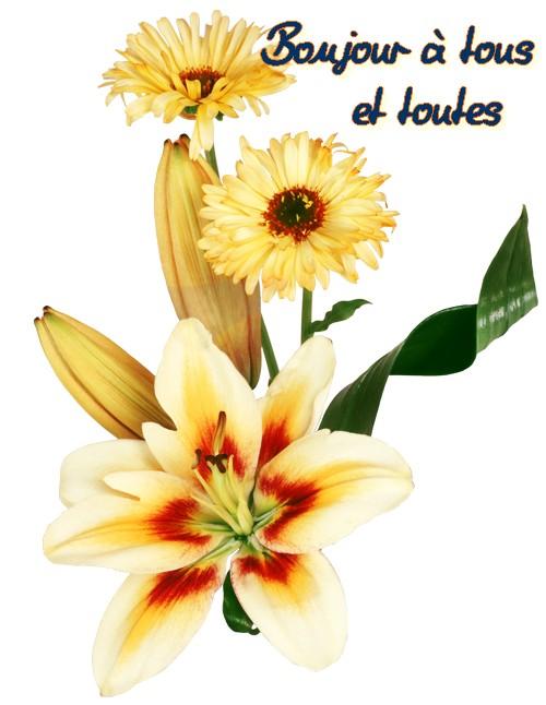 ma vérité plus de mes fleurs