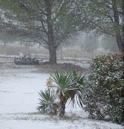 Et puis il s'est mis à neiger...