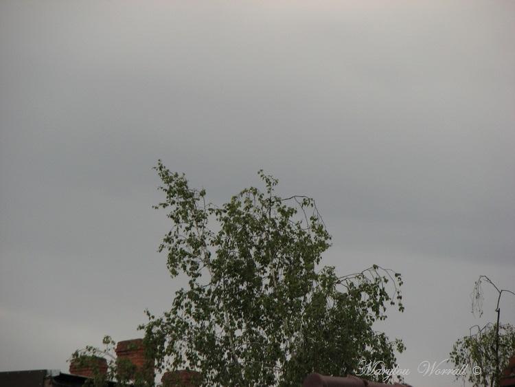 Ciel d'Alsace 376