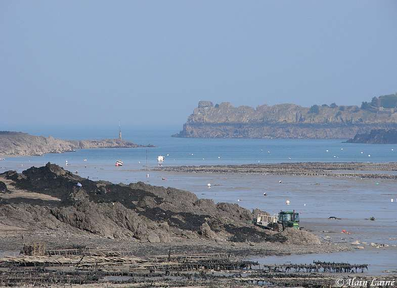 Cancale_25Fev09_25