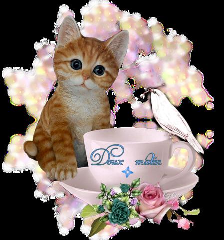 Mot de chaton
