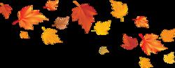 Au son du crépitement des feuilles qui tombent
