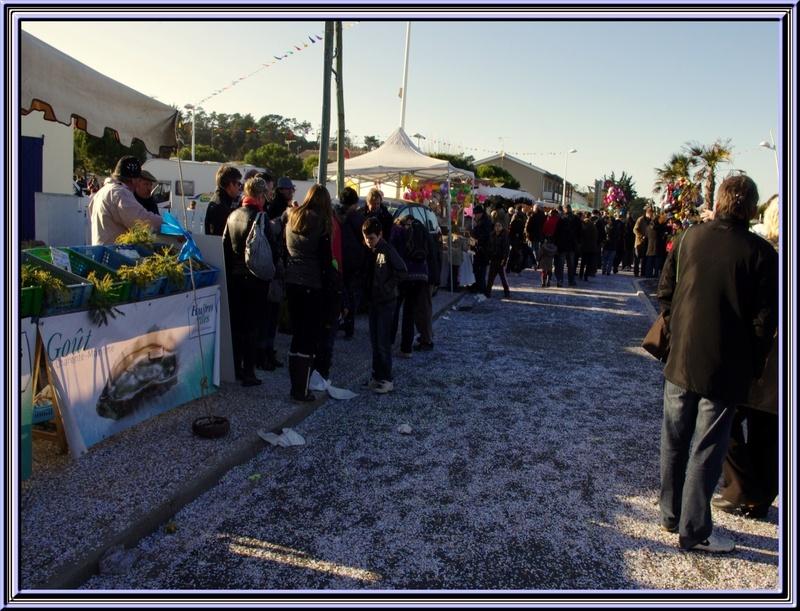 Fête du mimosa à St Trojan (île d'Oléron )19 février 2012 suite et fin