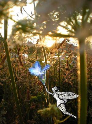 Fleur de fée