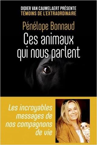 Le deuil envers nos animaux