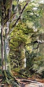 evhe--10049-arbres