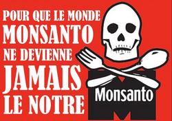 Monsanto - Kolibri